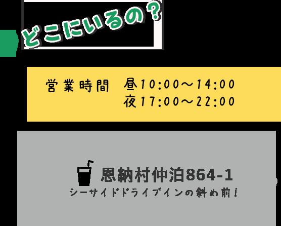 恩納村仲泊864-1